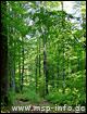 Wanderweg von Frammersbach zur Bayerischen Schanz