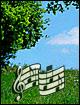 Weg der Lieder