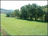 Wanderweg Stadelhofen-Laudenbach