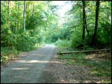 Wanderweg Mühlbach-Steinfeld