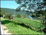 Radweg Mühlbach linksmainisch, bis Harrbach