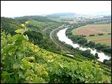 Weinwanderweg Stetten