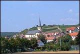 Erlenbacher Weinwanderweg 1