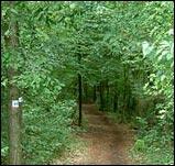 Main-Spessart Wandertour - Mainwanderweg Route 1